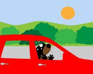 Dog in a hot car